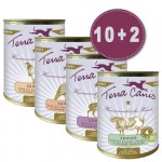 terra-canis-tv-angebot-senior