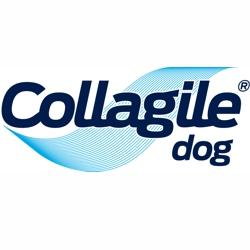 Collagile Dog Futterergänzung