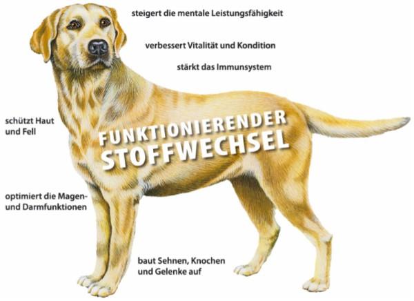 Grau Hokamix Futterergänzung unterstützt den Stoffwechsel bei Hunden