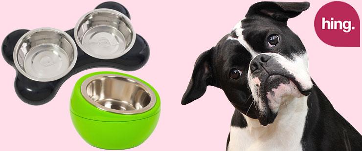 Futternapf von Hing für Hunde bei Futterfreund kaufen